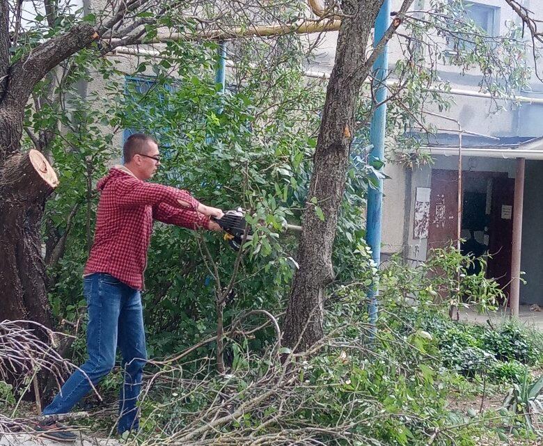 Спил аварийных деревьев на Кошевого, 31